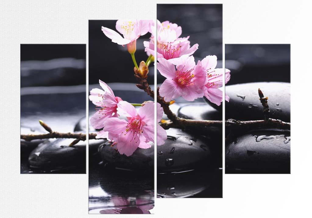 Flori de mar roz